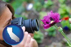 california a female photographer photographing a flower close-up