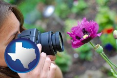 tx map icon and a female photographer photographing a flower close-up