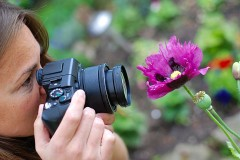 a female photographer photographing a flower close-up